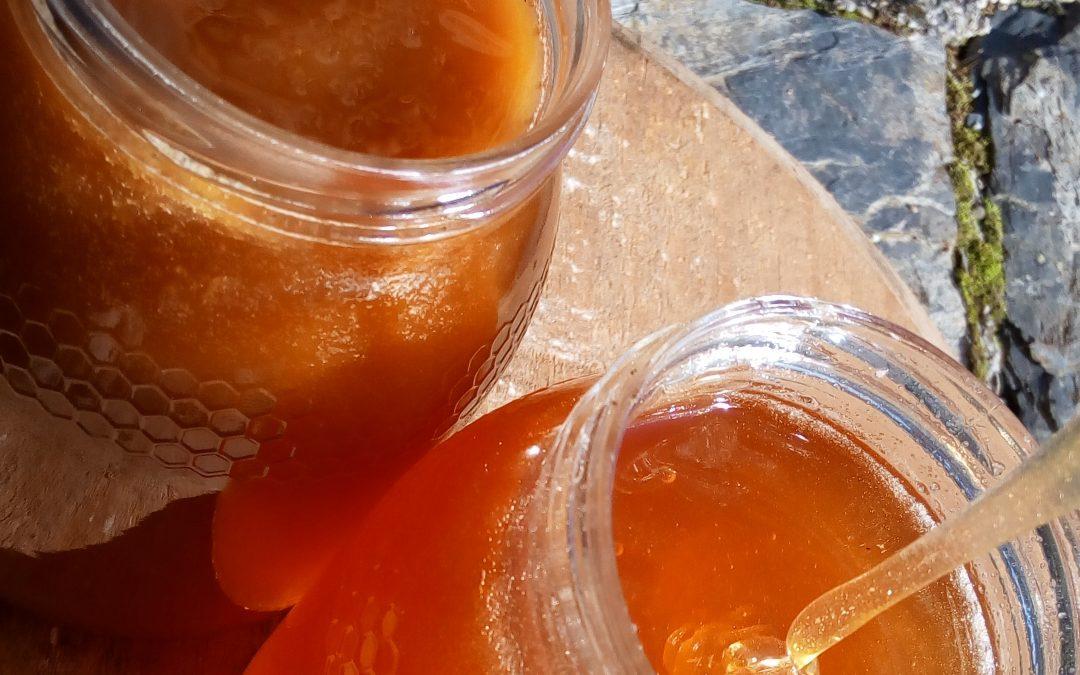 Miel cristlizada y miel líquida